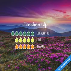 Freshen Up - Essential Oil Diffuser Blend