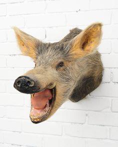 TX002 Angry Boar.jpg