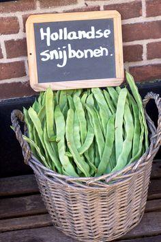 Snijbonen | Groente | Holland | | Markt | Harderwijk | Fotografie | ByEsther