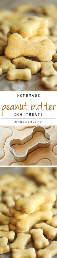 Homemade Peanut Butter Dog Treats - The easiest homemade dog treats ever - simply mix, roll and cut. Easy peasy, and so much healthier than store-bought! Damn Delicious