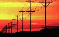 Telephone poles at sunset (or sunrise...)