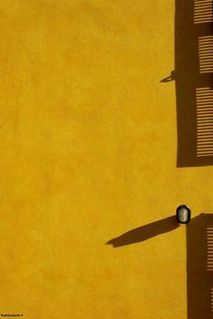 quenalbertini: Mustard Yellow by Paolo Luxardo Pho- tography Mellow Yellow, Mustard Yellow, Black N Yellow, Golden Yellow, Minimal Photography, Yellow Photography, Jaune Orange, Aesthetic Colors, Yellow Submarine
