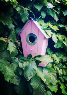 """The tiny birds, have already flown from the nest! "" -proud birdhouse owner. <3"