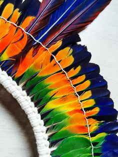 South American plumed head-dress