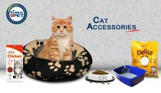 Personalized and comfortable accessories for your cats at 20% Off only on Timeforpet.com  Buy Now: https://goo.gl/kCTm0m #timeforpet #cat #buyonline