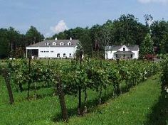 Stonefield Cellars Winery, Stokesdale, NC