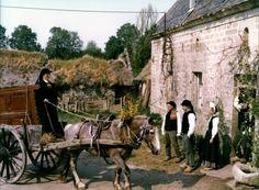 """Jacques Dufilho, François Cluzet, Bernadette Le Saché et Jacques Chailleux dans """"Le Cheval d'orgueil"""", de Claude Chabrol (1980)"""