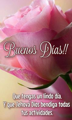 38 Ideas For Quotes Good Morning Spanish Good Morning Messages, Good Morning Greetings, Good Morning Quotes, New Quotes, Inspirational Quotes, Motivational, Good Morning In Spanish, India Quotes, Jehovah's Witnesses