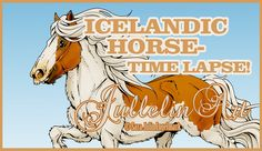 Icelandic Horse- Time Lapse Drawing! - YouTube