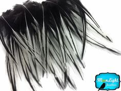 Craft Feathers | Moonlight Feather