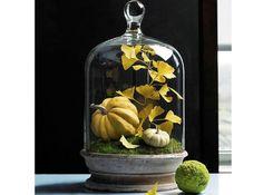 Comment creuser et d corer votre citrouille d halloween - Comment decorer une citrouille pour halloween ...