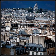 Roofs of Paris. France.