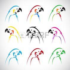 Vector afbeeldingen van groep papegaai op een witte achtergrond. Stockfoto - 30561334