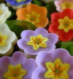 primrose bouquet, fondant + cookie