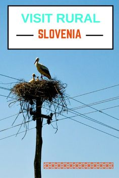 20 Photos That Will Make You Want To Visit Rural Slovenia. Click here to find out more!