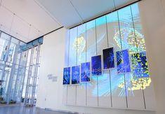 AV&C — The Brain Index – Columbia University Zuckerman Institute Interactive Walls, Interactive Installation, Installation Art, Exhibition Display, Exhibition Space, Architectural Scale, Showroom Interior Design, Kids Room Paint, Art Drawings For Kids