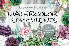 Watercolor Succulents by Crystalina's Shop on @creativemarket