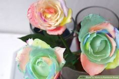 How to make rainbow roses with REAL flowers