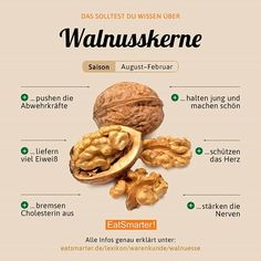 Already nine walnuts daily and a teaspoon of walnut oil can . Healthy Life, Healthy Eating, Dog Food Recipes, Healthy Recipes, Walnut Oil, Nutrition, Food Facts, Eat Smarter, Superfood