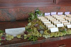 For place cards on Entry table   The cutting Garden @ Flora grub.  Love