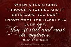 Cuando el tren pasa va a través de un tunel y todo se vuelve oscuro, tú no tiras el boleto y saltas fuera del tren. Permaneces sentado y confias en el ingeniero.