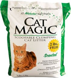 Cat Magic Scented Clumping Clay Cat Litter *** Trust me, this is great! Click the image. : Cat litter