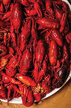 The Local Palate - How to Eat a Crawfish