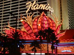 Pink Flamingo Hotel, Las Vegas - we had a high floor and a great view of the city Drive Across America, Flamingo Hotel, Flamingo Casino, The World Tarot, Fear And Loathing, Roadside Attractions, Las Vegas Weddings, Las Vegas Nevada, Great View
