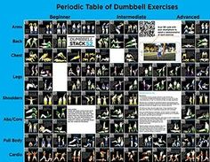 Dumbbell Exercise Periodic Table