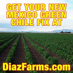 Craving green chile? We got you covered!  Diaz Farms will ship you fresh New Mexico Green Chile right to your doorstep. Ordering starts August 1st at http://DiazFarms.com/!