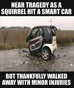 OMG LOL!!