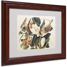 Trademark Fine Art Black-Billed Cuckoo Canvas Art by John James Audubon, Wood Frame, Size: 16 x 20, Multicolor