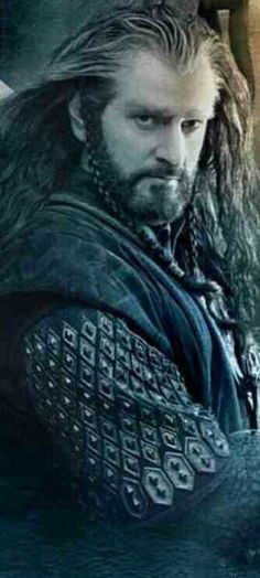 Thorin Oakenshield, I love his braided sideburns! Dwarves sure have sensational hair styles, you can't beet long locks and beards braided intricately!!!