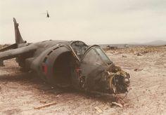 47 Best Falkland War Images On Pinterest Falklands War