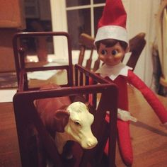 12 Ranch Elves NOT Sitting on Shelves! Here are some elves who are having a great time with their agriculture families! - The Ranch House Designs Blog