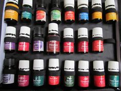 Have to check out this Essential Oil Guide. She doesn't do an in depth analysis on a vast number of essential oils but the ones she does do she is very thorough. Uses for Peppermint, Thieves, Valor, PanAway, lavender.