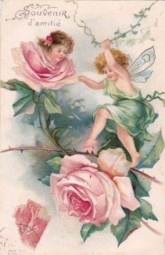 cherubs roses | eBay
