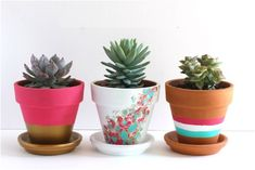 21 Creative DIY's To Embelish Your Boring Planters