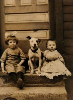"The nanny dog doing his duty! Pit Bulls were referred to as the ""nanny dog"" throughout the 1800s. If you had children, Pitties were the dogs to have. They were alert and protective of their charges and would never fail to keep their people safe; or die trying."
