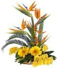 Mix Exotic Basket 5 BOP + 5 Yellow Gerabera + 10 Yellow Roses with Greens Exotic Basket.
