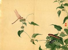 Japanese print insects dragon fly
