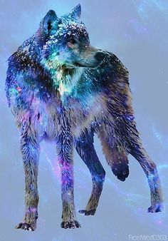 Wolf abstract art