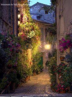 Spello - Umbria (Italia)