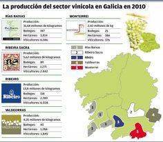 La produccion del sector vinícola en Galicia en 2010