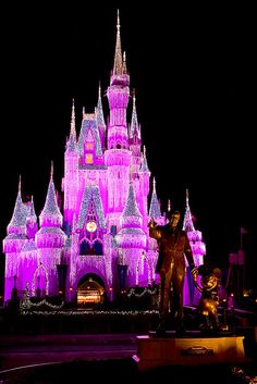 WDW - Cinderella Castle