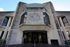 AN illegal dog breeder has been handed a suspended prison sentence and ordered to pay over after selling sick puppies with false pedigree… Alex Gordon, Sick Puppies, South Wales, Mansions, House Styles, Dogs, Google Search, Villas, Doggies