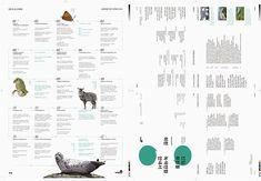 layout design ideas