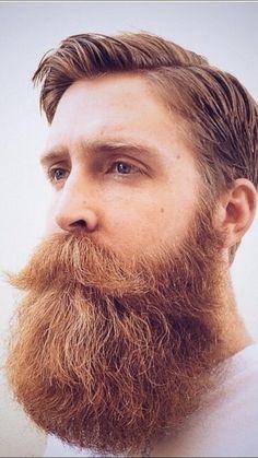 Walrus Mustache, Beard No Mustache, Great Beards, Awesome Beards, Hairy Men, Bearded Men, Different Beard Styles, Beard Images, Beard Cuts