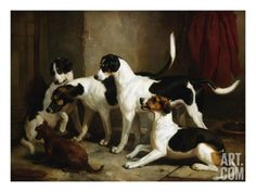 The Puckeridge Foxhounds Rantipole, Rummager, Racer, and Reveller Giclee Print by Thomas Woodward at Art.com