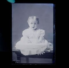 Glass Plate Cute little girl in a beautiful Victorian lace trimmed dress. c.1880s / 1890s